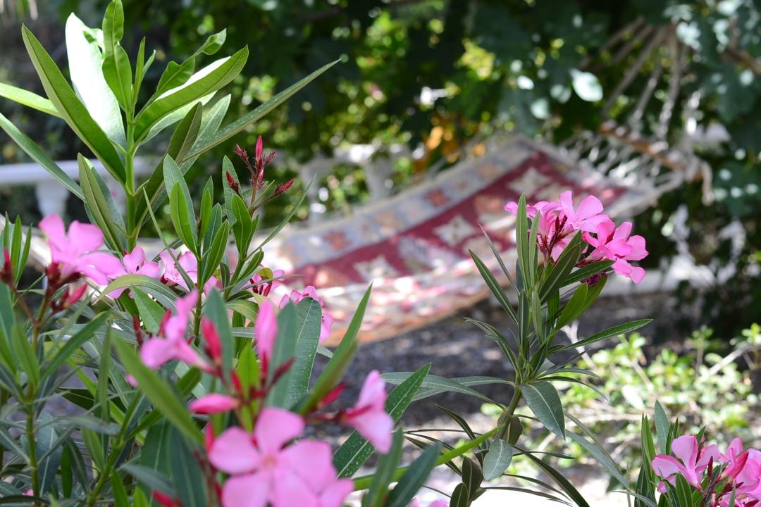 honeymoon villa for sale in kargicak alanya